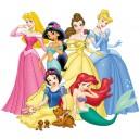 Etiquettes princesses
